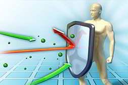 Клинистил обладает защитной функцией