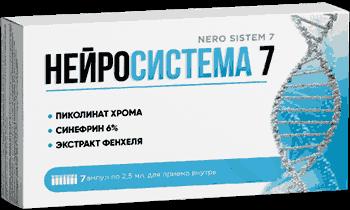 Нейросистема 7