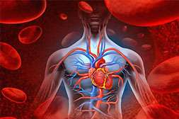 Лекарство Гипертен помогает нормализовать деятельность сердечно-сосудистой системы