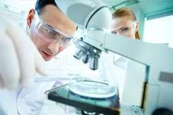 Капли Ретоксин действуют против любых паразитов.