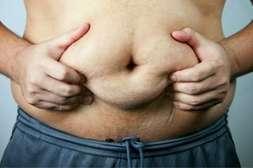 Жировые прослойки во внутренних органах расщепляются с TwinsFit.