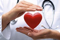 Положительно влияет на ССС в целом препарат Dr.Cord.